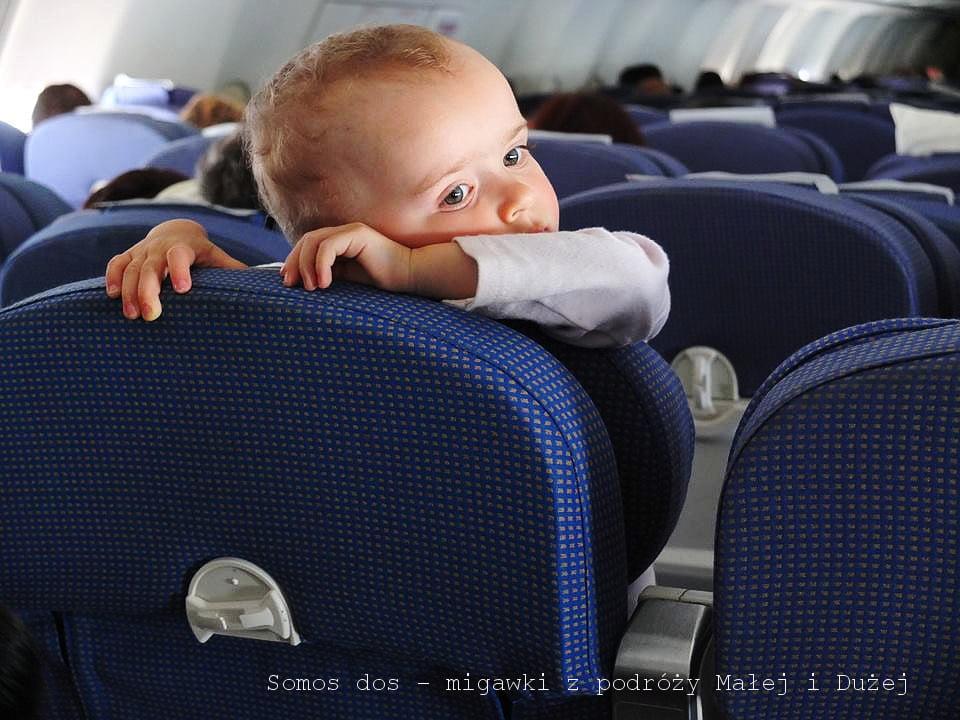 gaj w samolocie p
