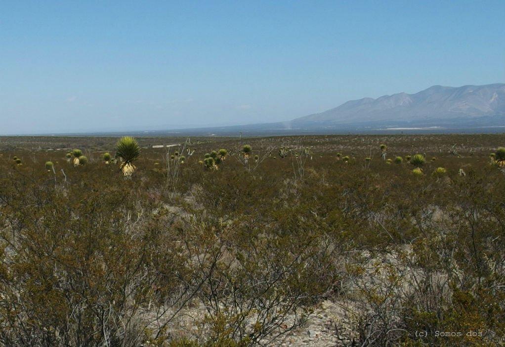 pustynia gory