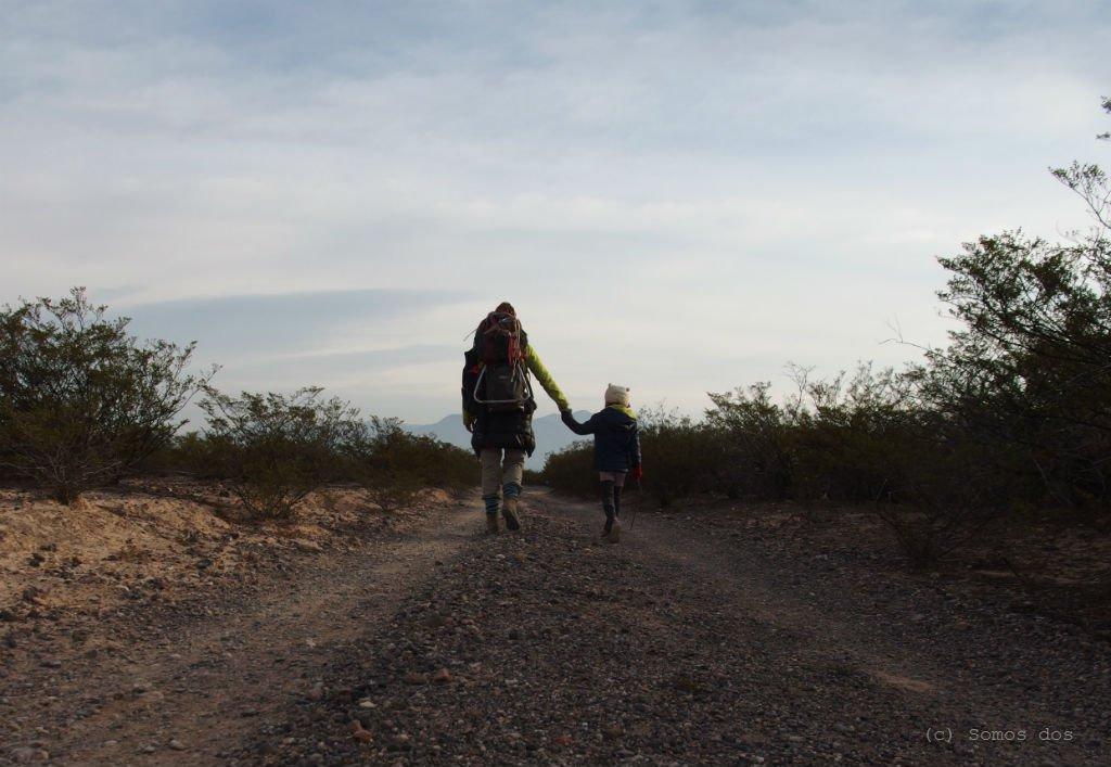 pustynia powrot droga