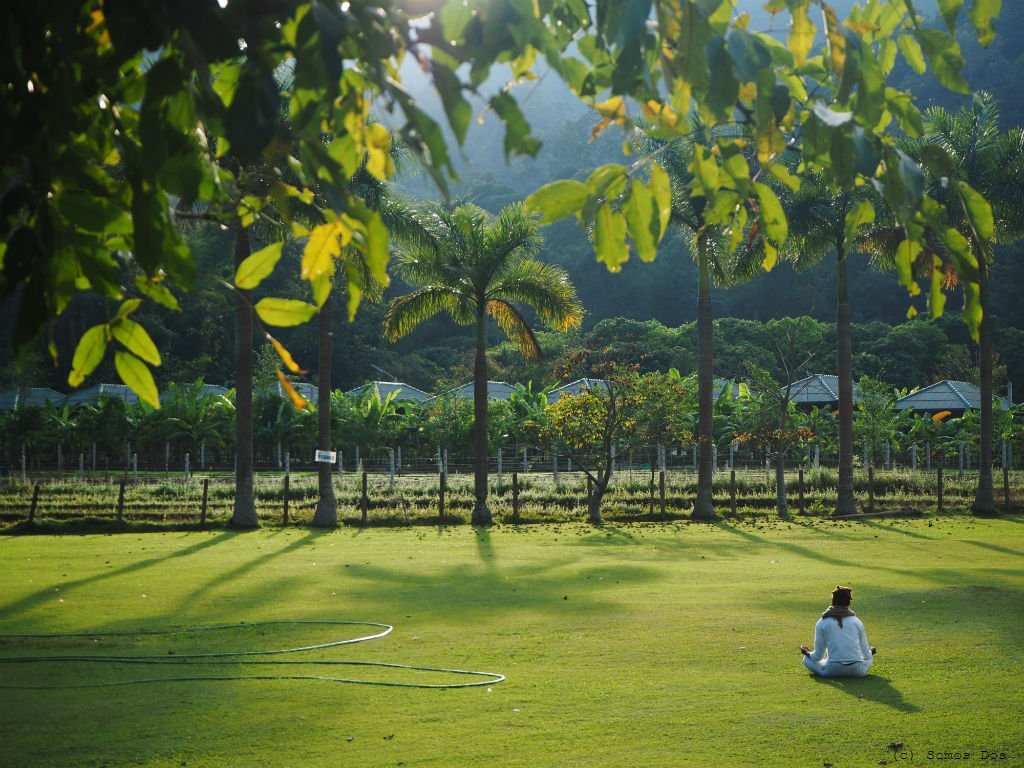 medytacja na trawie
