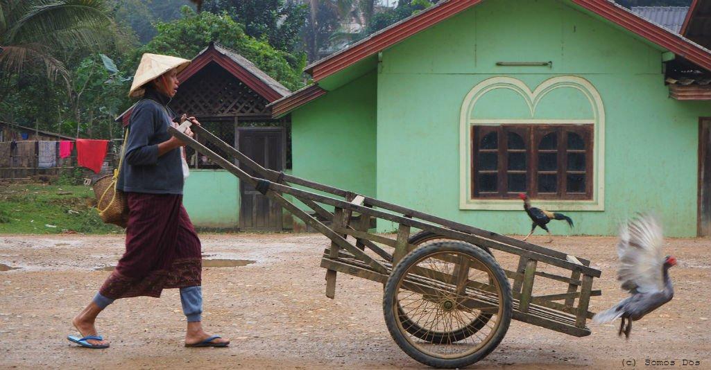 Obwoźny sprzedawca, Laos. (Jedzenie szczura)