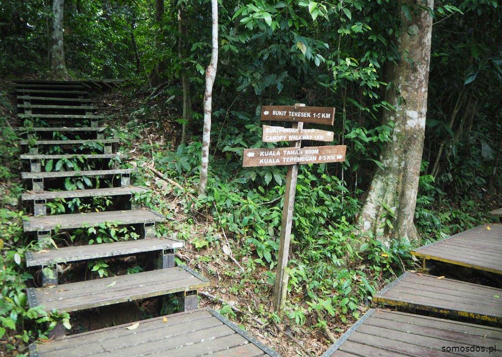 taman negara walk, malaysia