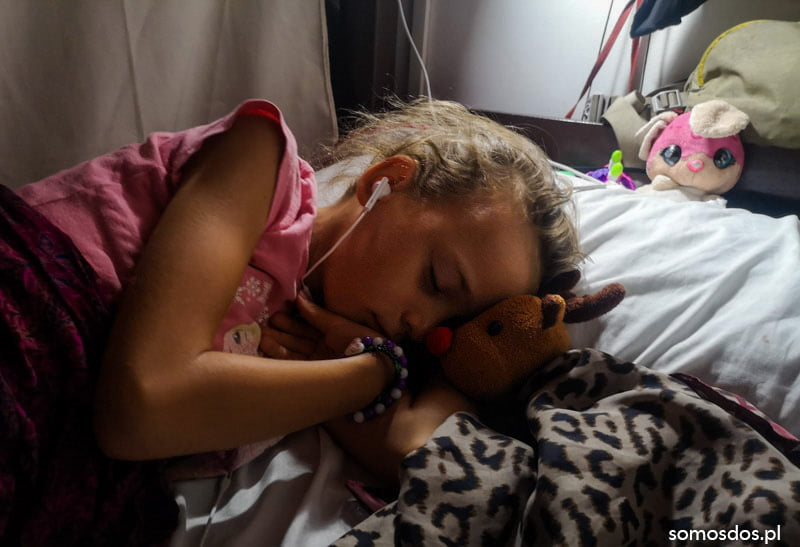 Gaja spi z Renim