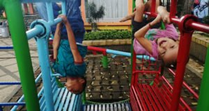 gaja na hustawkach indonezja bukittingi