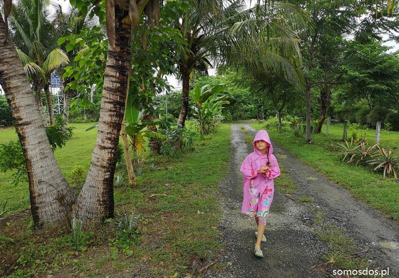 deszcz w Hiraya