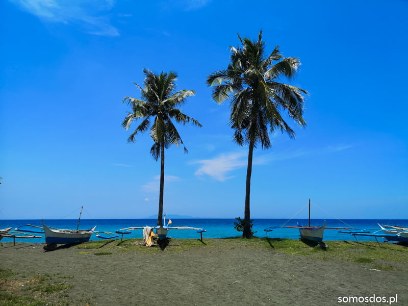 Asia i Gaja jako palmy