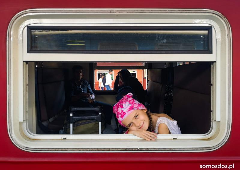 Gaja w oknie pociągu