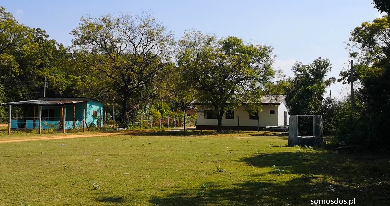 Pigeon hostel