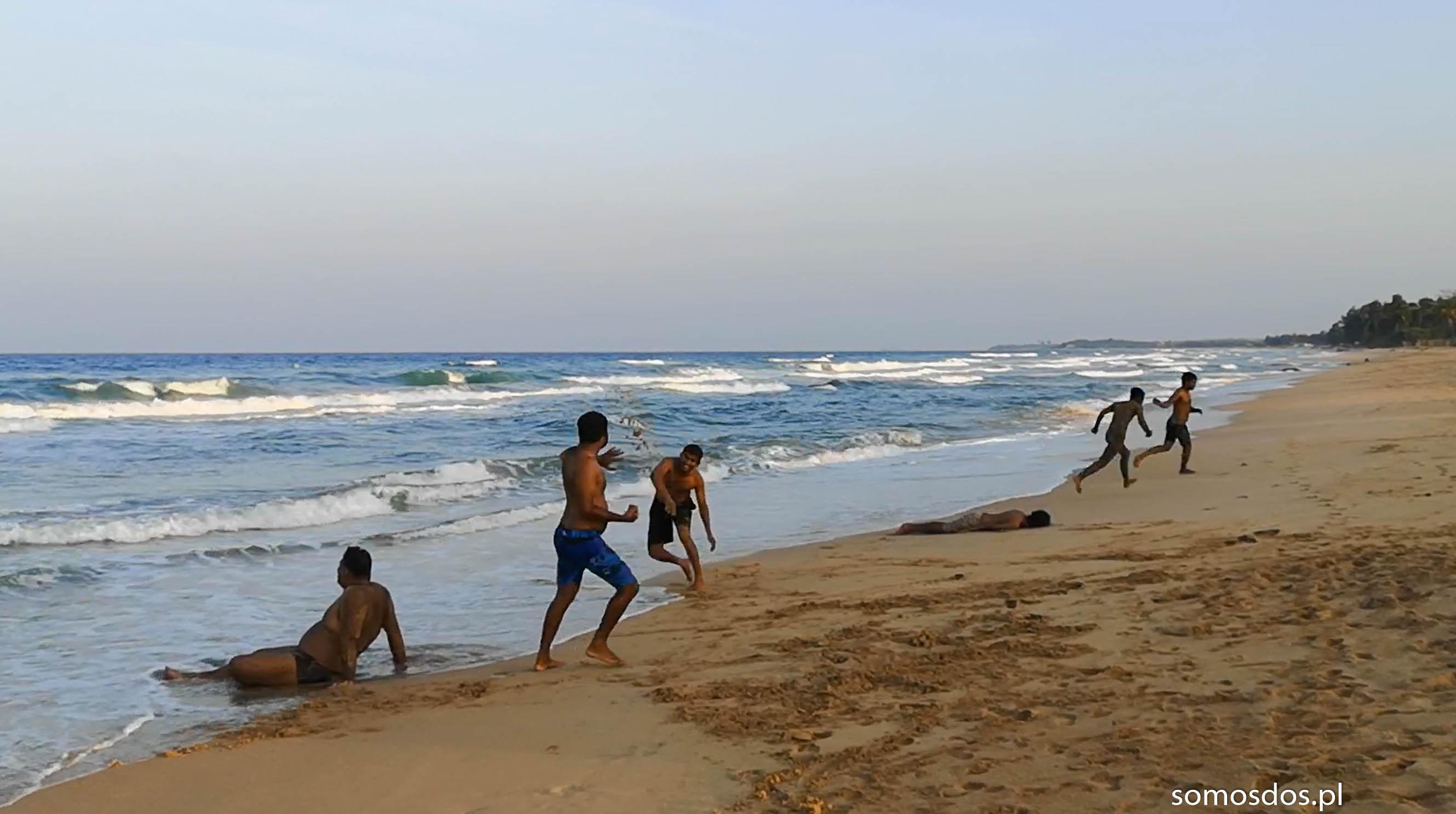 bitwa na plazy